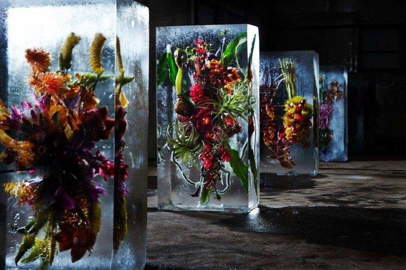 Цветы в ледяных призмах