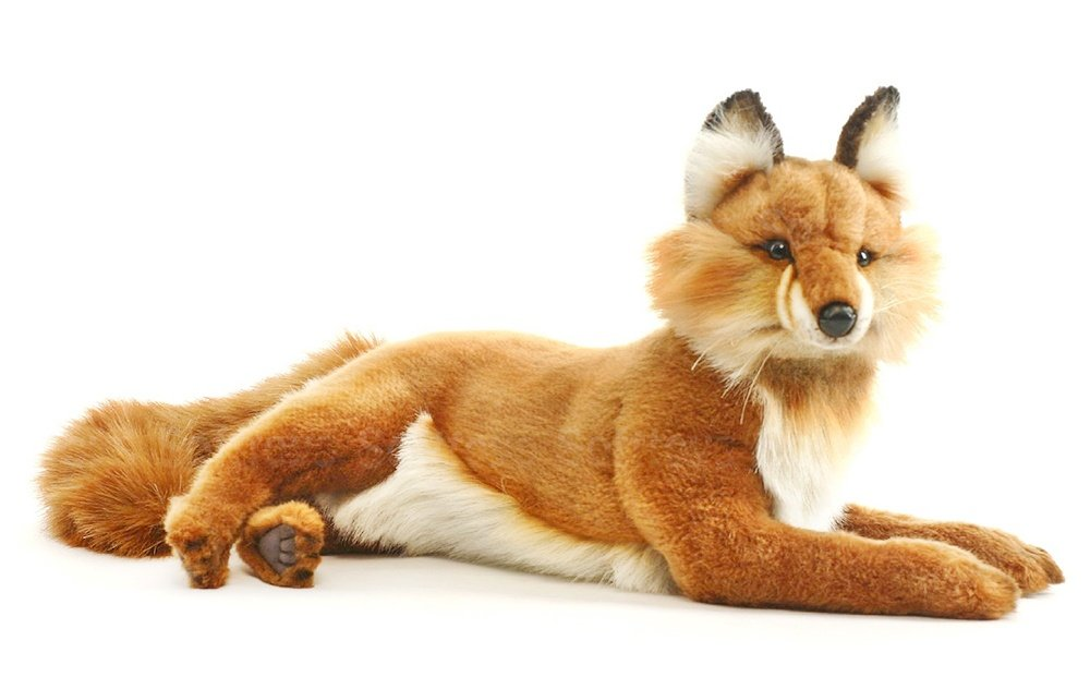 realistic fur fox lifelike wolf amp raccoon stuffed animal - 1000×621