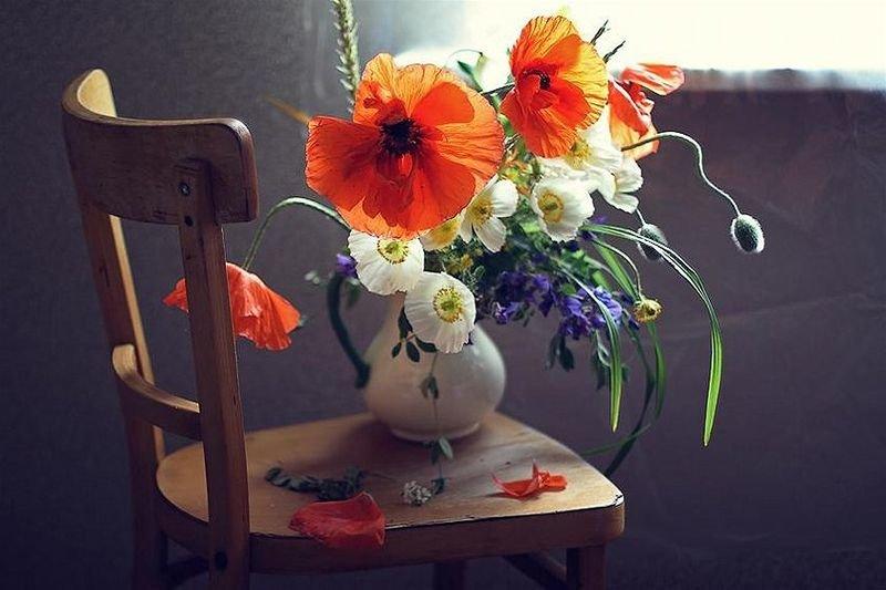 комнате художественное фото цветка творческого