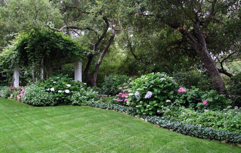 Donna Lynn - Landscape Designer