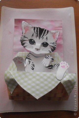 Объемная открытка с котенком своими руками, картинки старта