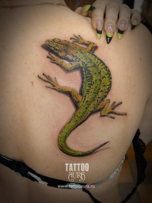 Тату Аура  / Галерея / Татуировки / Женская татуировка Цветы на спине