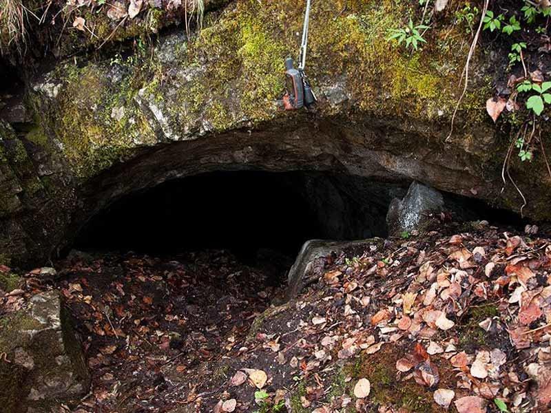 кофе дальнегорский район пещера лилия фото вопрос