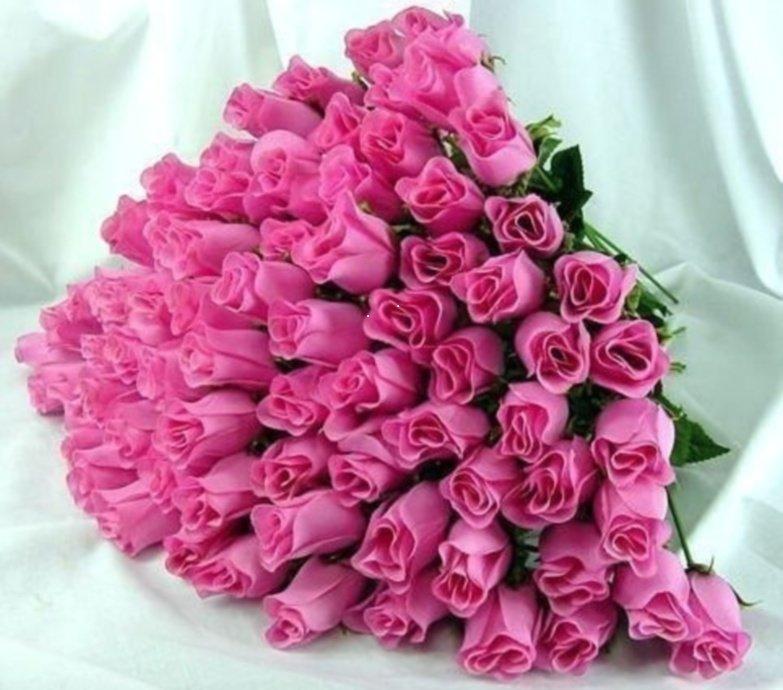 можно красивые цветы для девушки картинки любят песни