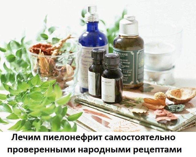 Эффективное лечение пиелонефрита и болезней почек в домашних ...