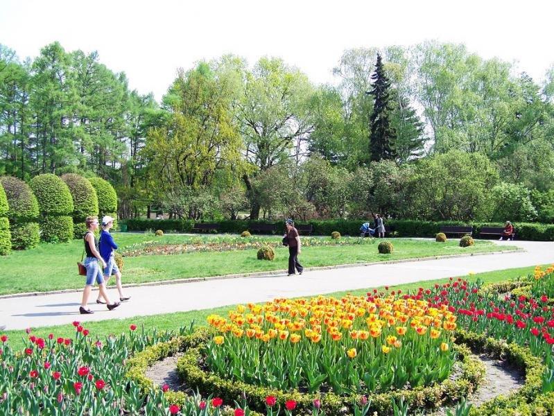виды фоминский ботанический сад фото в киеве для чего