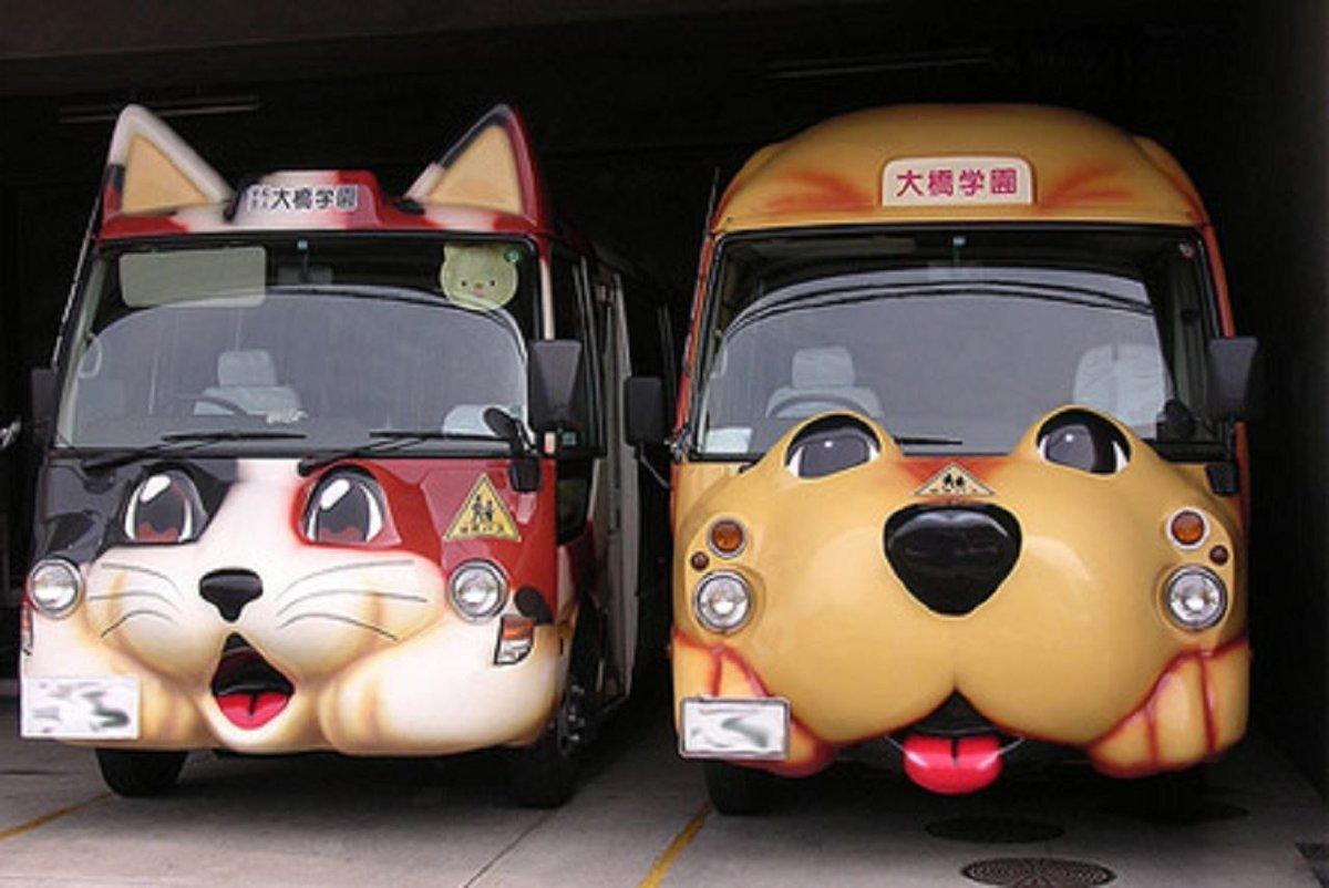 автобус с картинками животных внутри