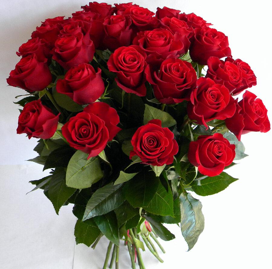 Цветов красивые букетов роз с днем рождения картинки, цветов