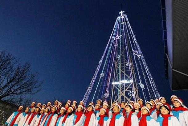 В 2011 году эта необычная новогодняя елка была установлена в Сеуле, Южная Корея. Дерево было расположено всего в 3 километрах от границы с Северной Кореей, предоставляя жителям соседней страны возможность полюбоваться им издали.