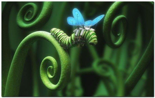 Нельзя приклеить к гусенице крылья и заставить ее летать, как бабочку. Она должна измениться изнутри