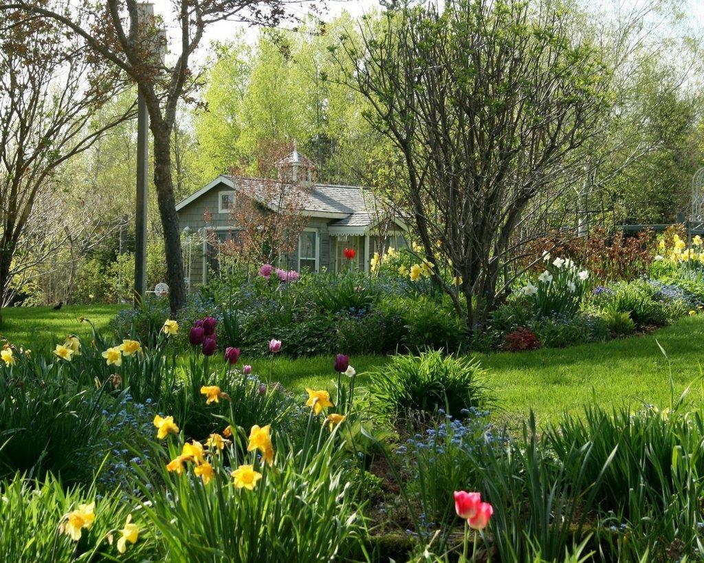 Весна картинки для дизайна