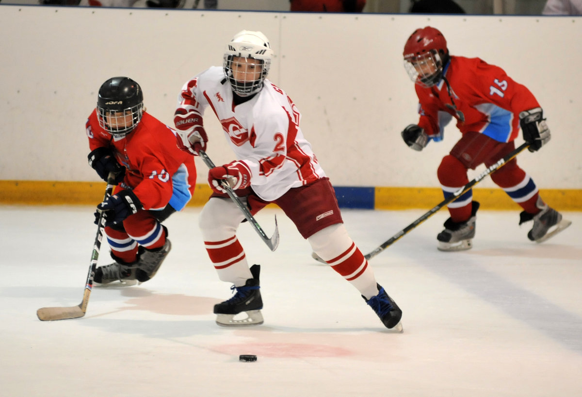 Картинки виды спорта хоккей