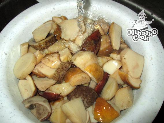 белые грибы маринованные фото