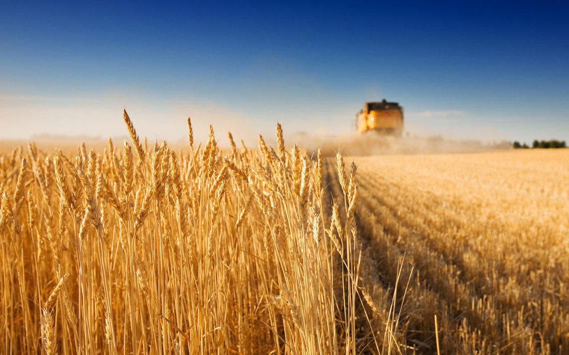 Картинки сельского хозяйства, приколы