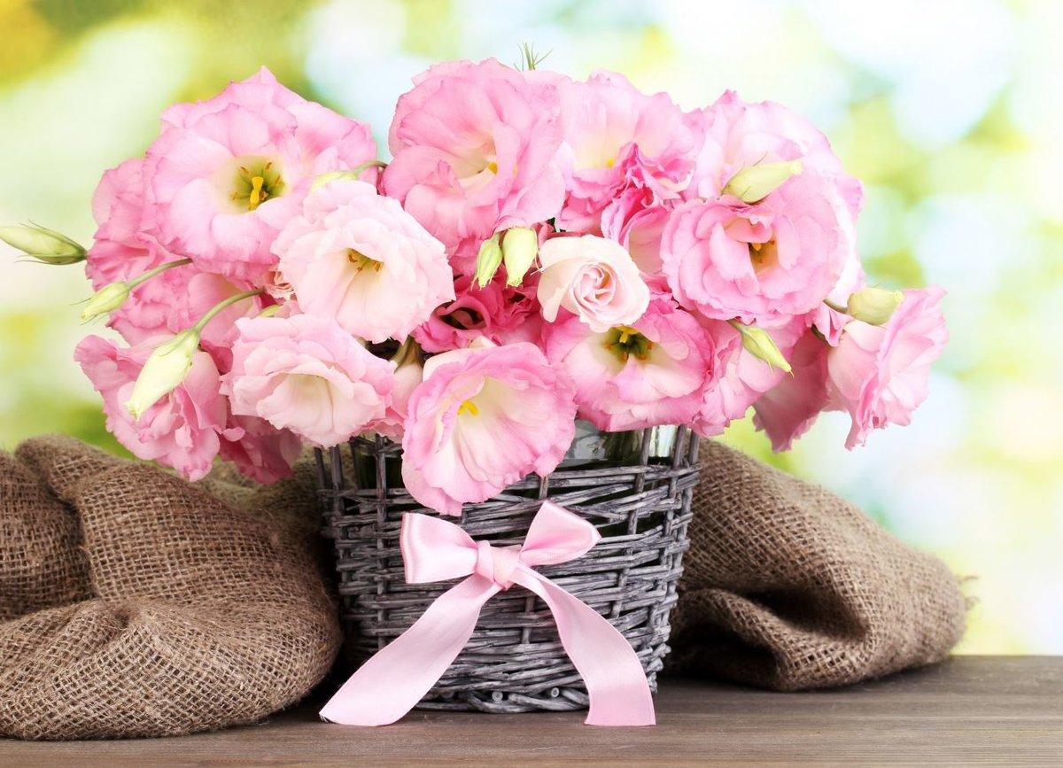 Лучше, поздравление с днем рождения с подарком цветы