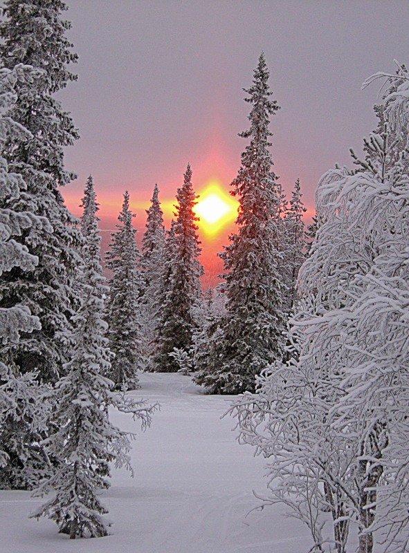 голосом зимний пейзаж картинки книжный формат достаточно