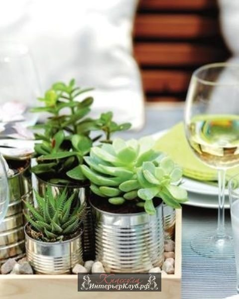 Цветы и живые растения дарят интерьеру природное очарование и свежесть. Небольшие цветочные композиции не просто оживляют атмосферу, а становятся стильным акцентом в оформлении интерьера. Суккуленты идеальны для создания флористических композиций. Суккуленты не требуют много места, света или большого количества почвы. Питательная среда из грунта, коры, гальки и немного влаги - суккуленты просты в уходе. Суккуленты украшают террариумы и домашние мини сады. Они настолько разнообразны по цвету и форме, что из суккулентов можно создавать целые цветочные картины и панно. Суккуленты незаменимы в сервировке стола, когда хочется привнести живые пикантные акценты. Эти цветы не занимают много места. Композиции из суккулентов можно разместить с старых чайных чашках и винтажных чайниках, на деревянном подносе или в старой миске, подсвечники с суккулентами украсят камин или полку в гостиной. Украсьте композицию с суккулентами мхом и галькой. Создайте из суккулентов целый волшебный садик в глиняном горшке или кашпо - при помощи мини мебели, мини садового декора и фигурок эльфов или фей можно создать настоящую садовую миниатюру с экзотическими растениями и пальмами из суккулентов, садовыми дорожками, прудом и даже домиком Эльфа. Здесь ВЫ найдете много идей, как оформить суккуленты в интерьере и создать из них красивый цветочный декор для украшения дома. Идеи для оформления дома. Идеи дизайна интерьера. Идеи интерьерного декора и тенденции дизайна интерьера.  Актуальный и модный декор интерьера, стильные элементы дизайна и аксессуары, интересные идеи для оформления интерьера и создания индивидуального стиля, рекомендации дизайнеров по декорированию интерьера, дизайн интерьера в деталях. Современные тенденции в дизайне интерьера. Стильные интерьеры. Дизайн интерьера советы. Идеи для интерьера своими руками