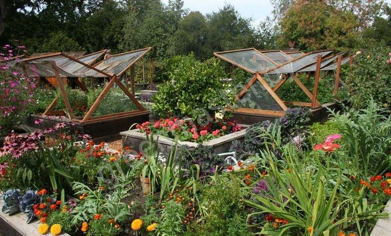 Дача сад огород своими руками фото