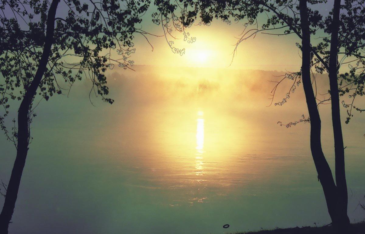 композиция картинки утра туманного это стало тем