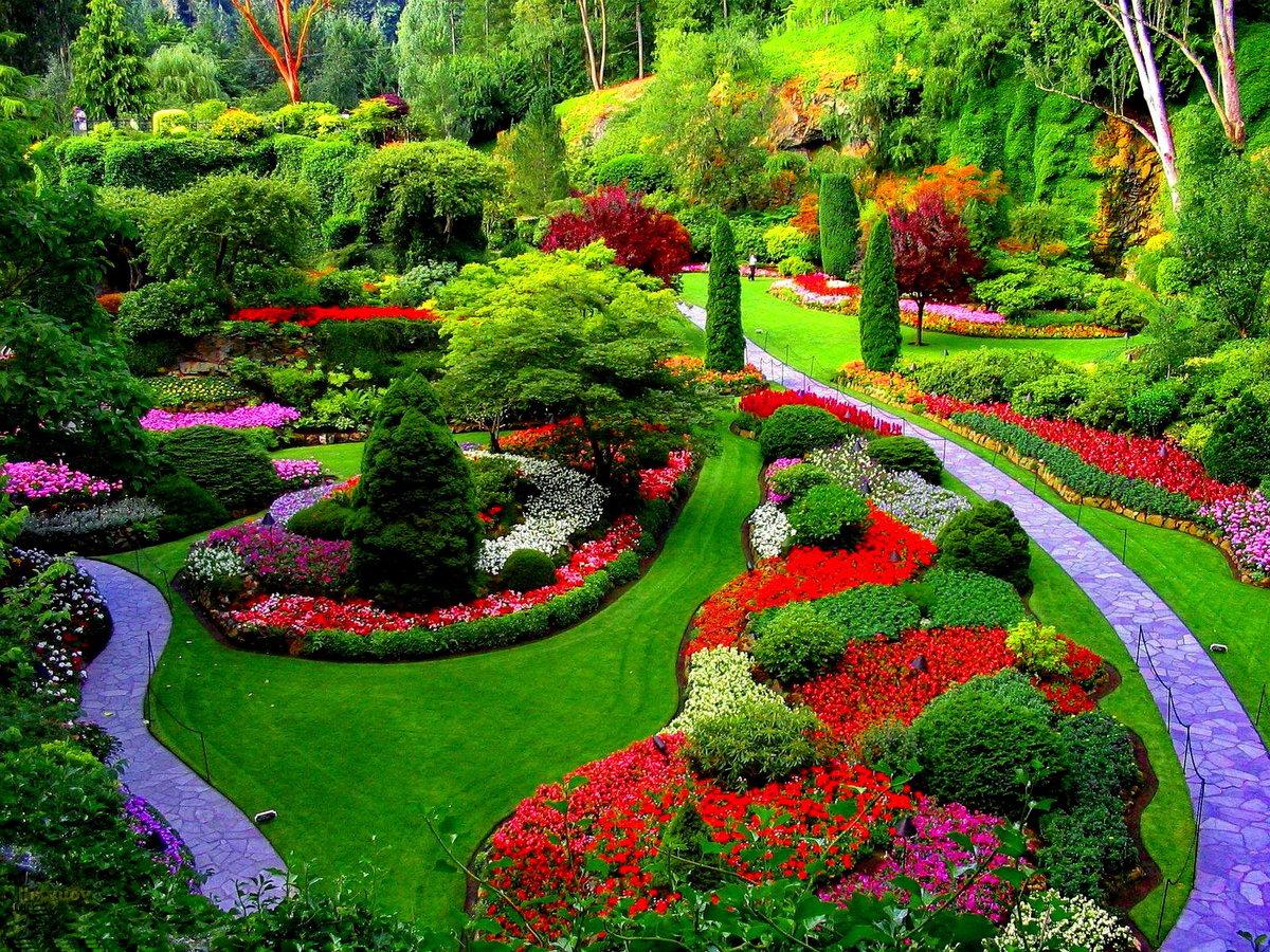 смотреть фото красивых цветников и садов