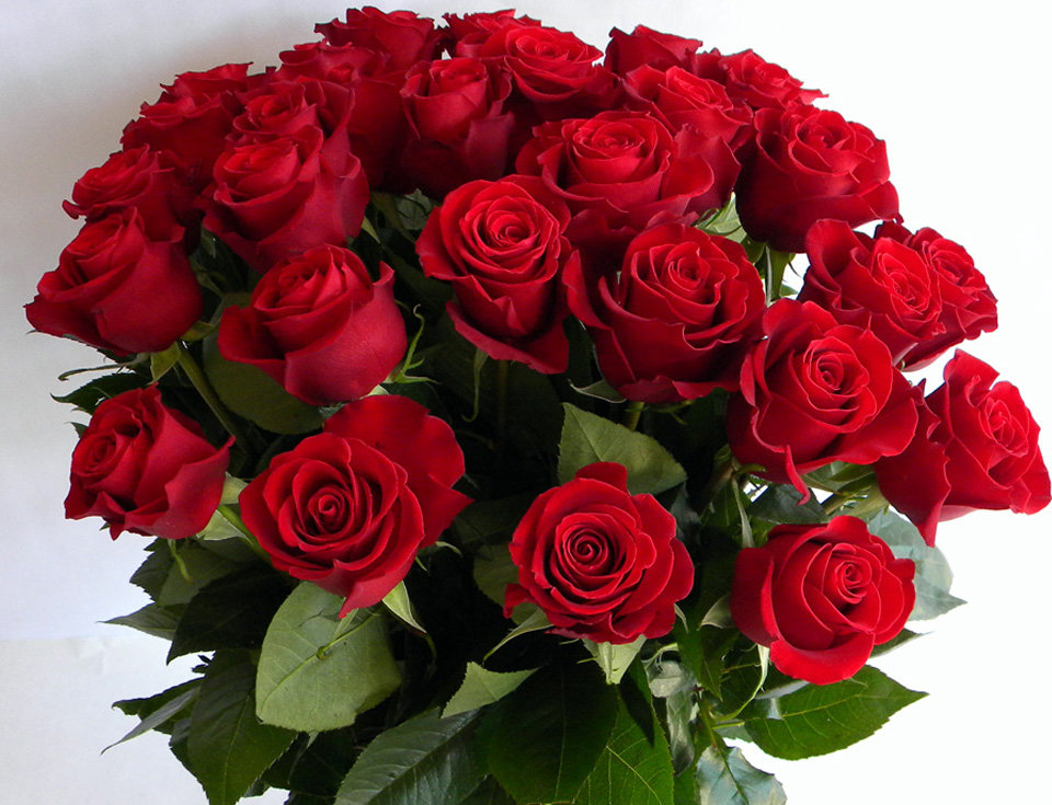 Красивые открытки с розами фото