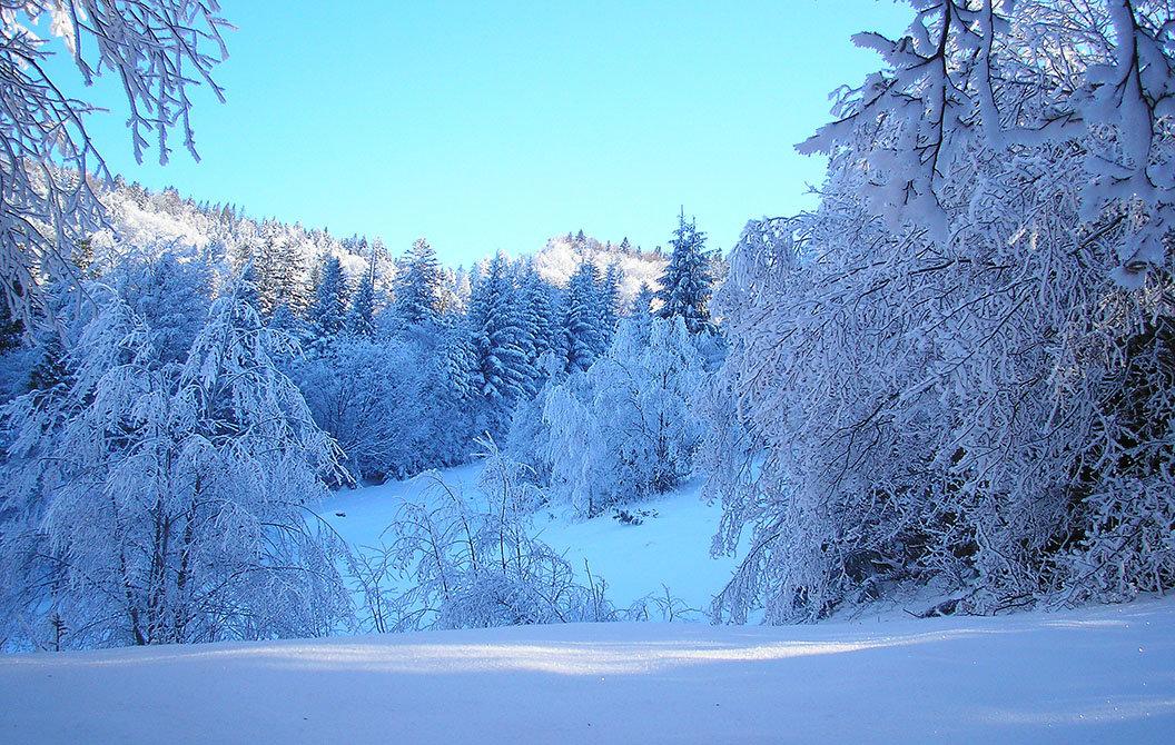 Всеволожск, открытка с зимой фото