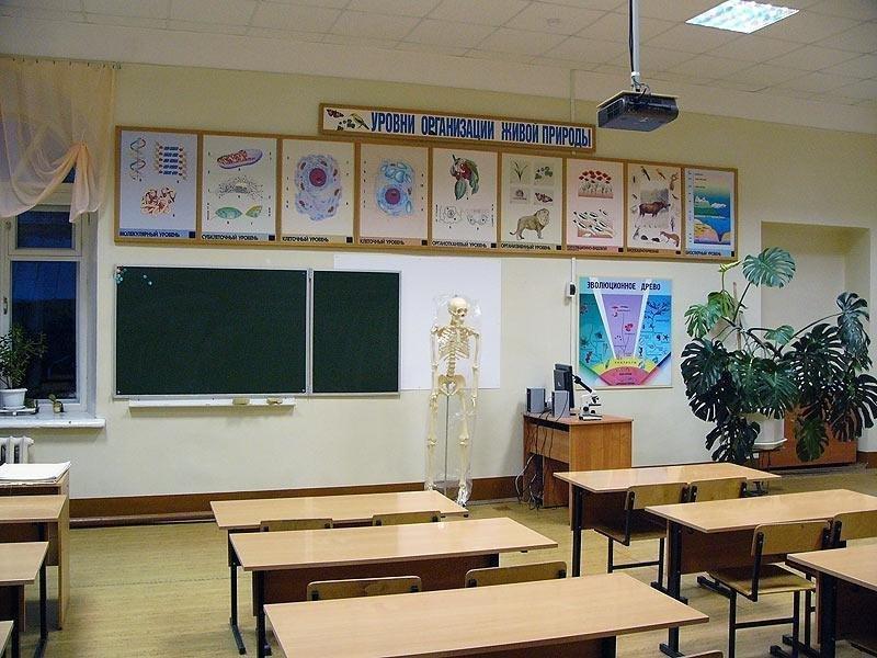 Картинки в кабинете химии и биологии
