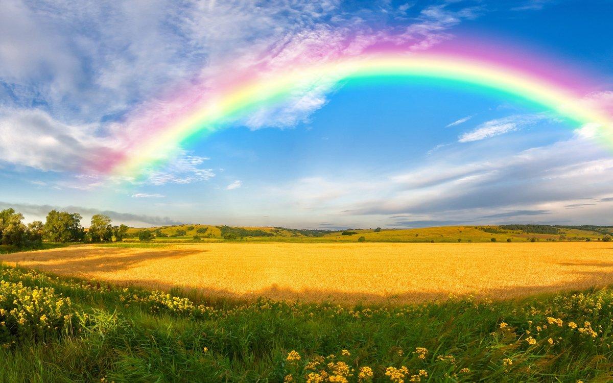 Подписывать открытки, анимация радуга над полем