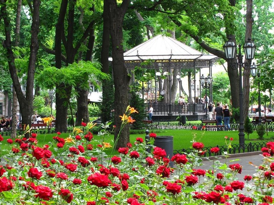 городской сад одесса фото ничего