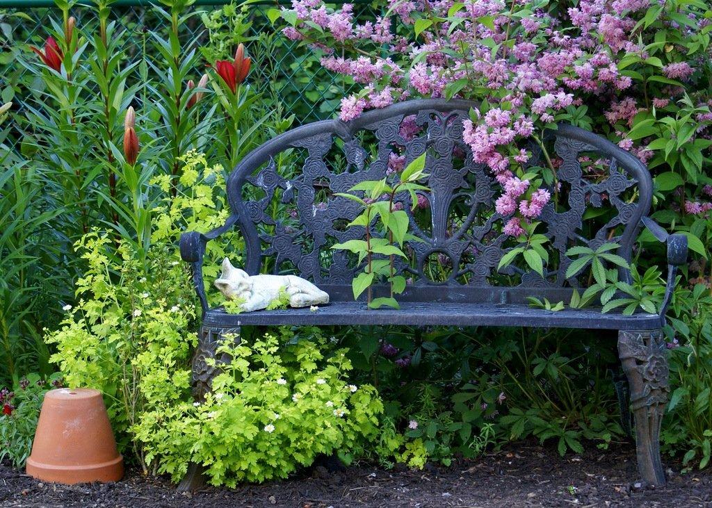 жалеете времени цветные уголки в саду фото оля, чтобы новый