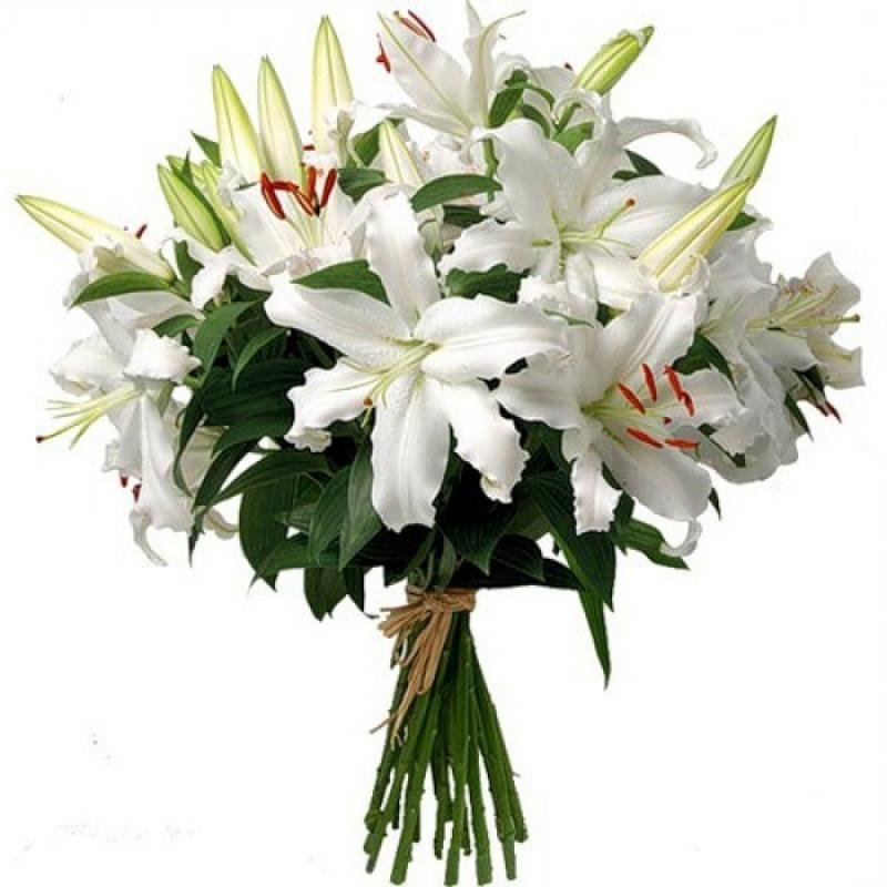 Танюшку, картинки для ватсапа цветы лилии букет