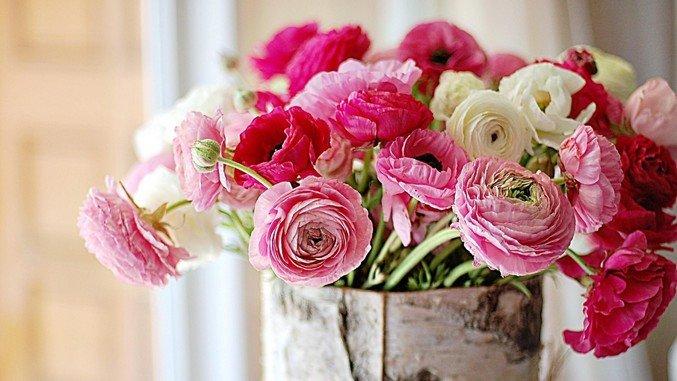 Картинки по запросу цветы на день рождения