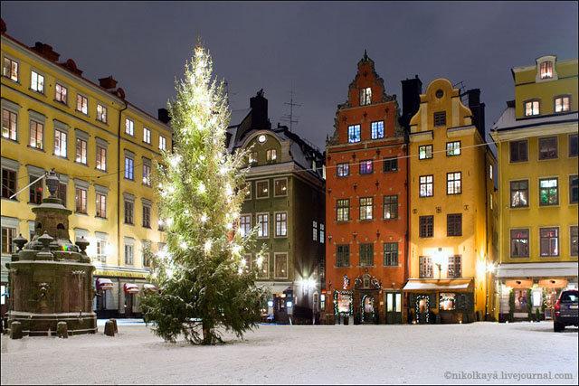 Картинки по запросу фото новогоднего стокгольма