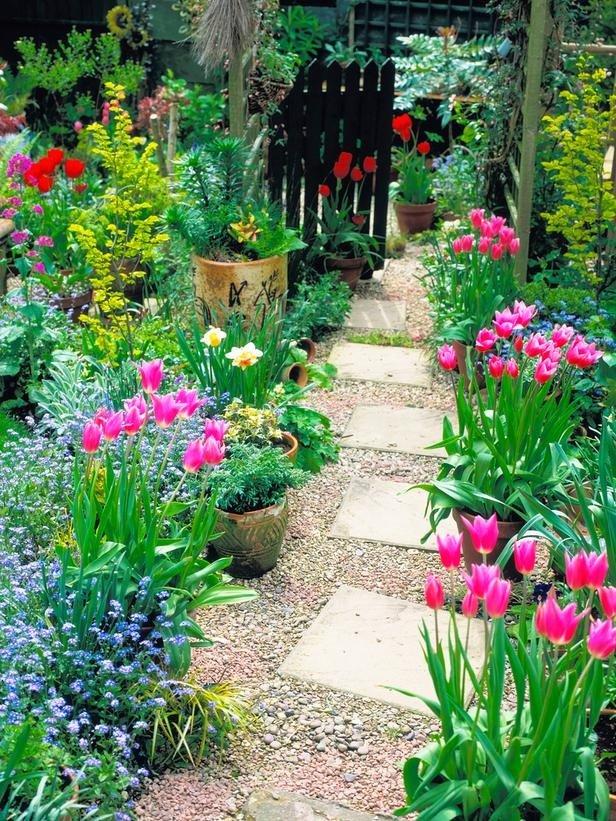 Гортензия садовая красная уход фото оснастят