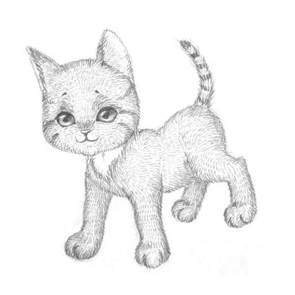 рисунки животных. фото