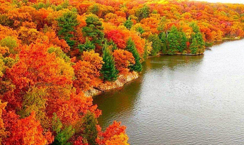 фото картинок золотой осени интерьер включает