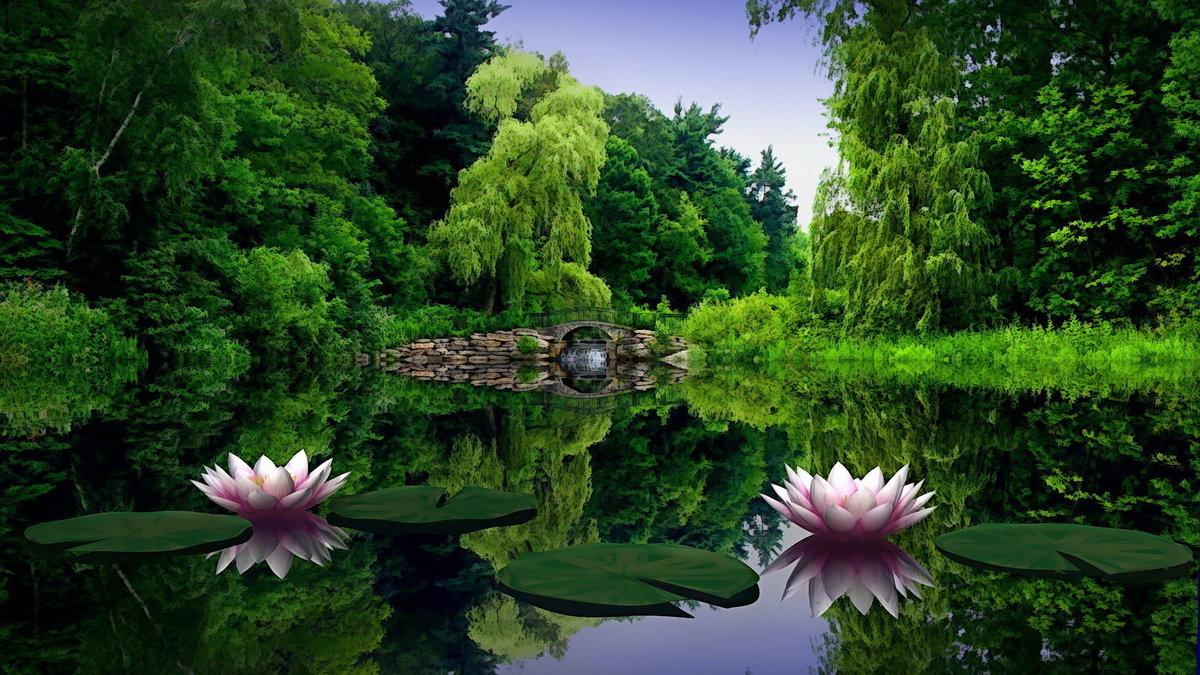 Природа на открытку