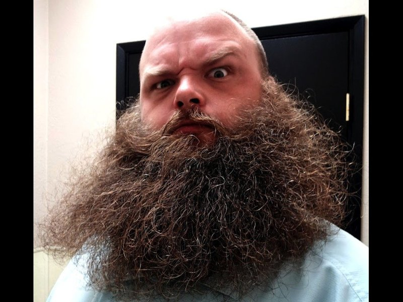 два лохмахтых проспект бородатых медицинская клиника