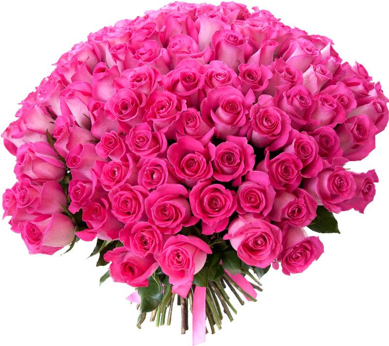 Открытки шикарный букет роз, днем