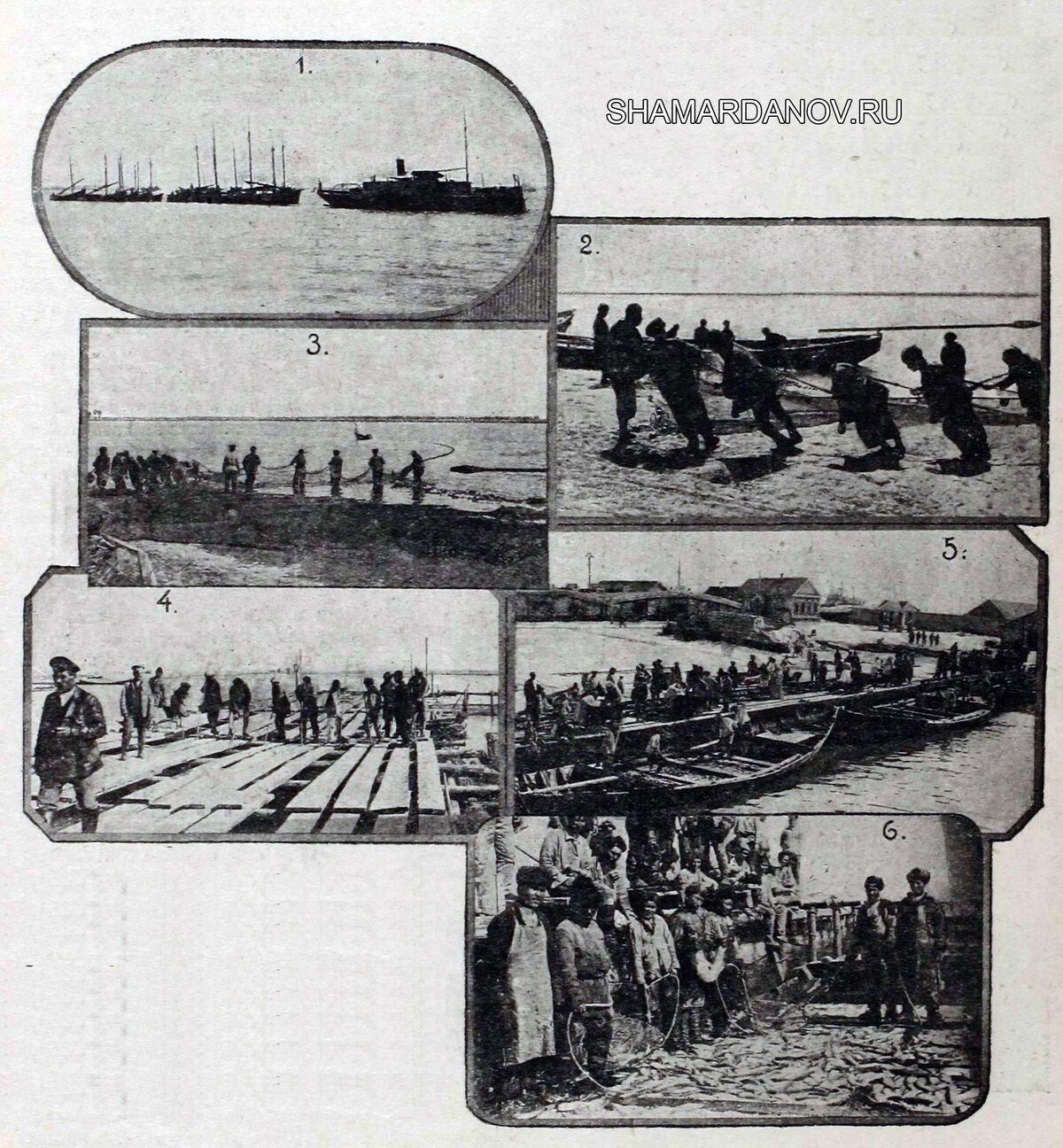 Борис Иванов — Астраханские рыбные промыслы