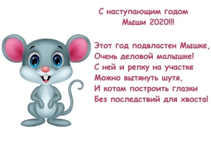 Новогодние поздравления с мышкой