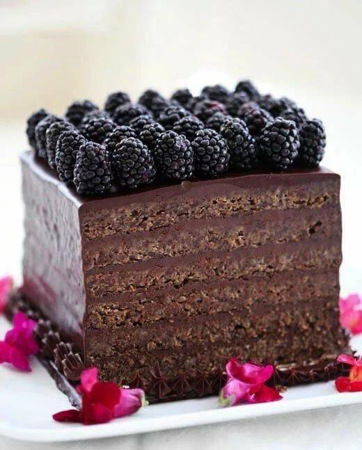 несколько торт с ежевикой картинки поздравил