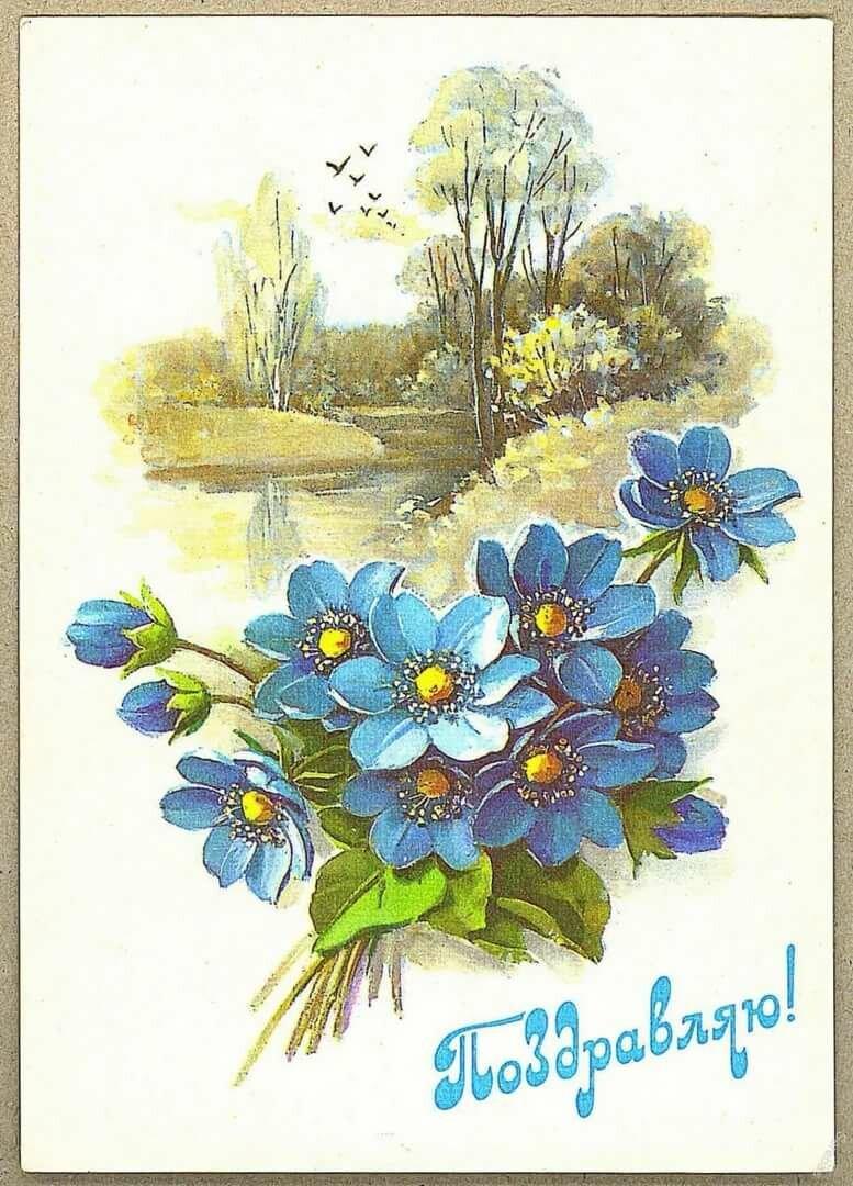 открытки куртенко фото этом разделе можно