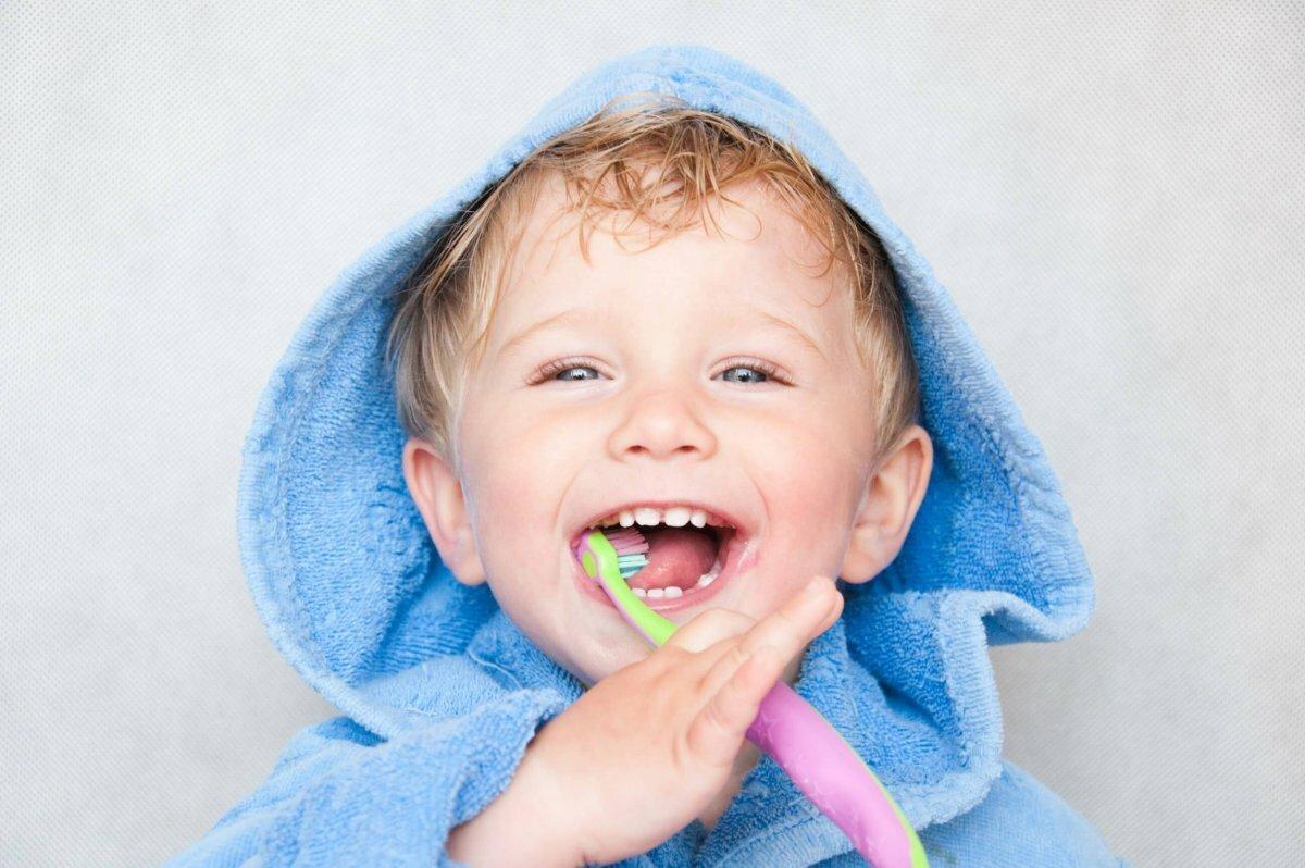 президенты картинки малыш с зубками каучуконосный очень распространенное