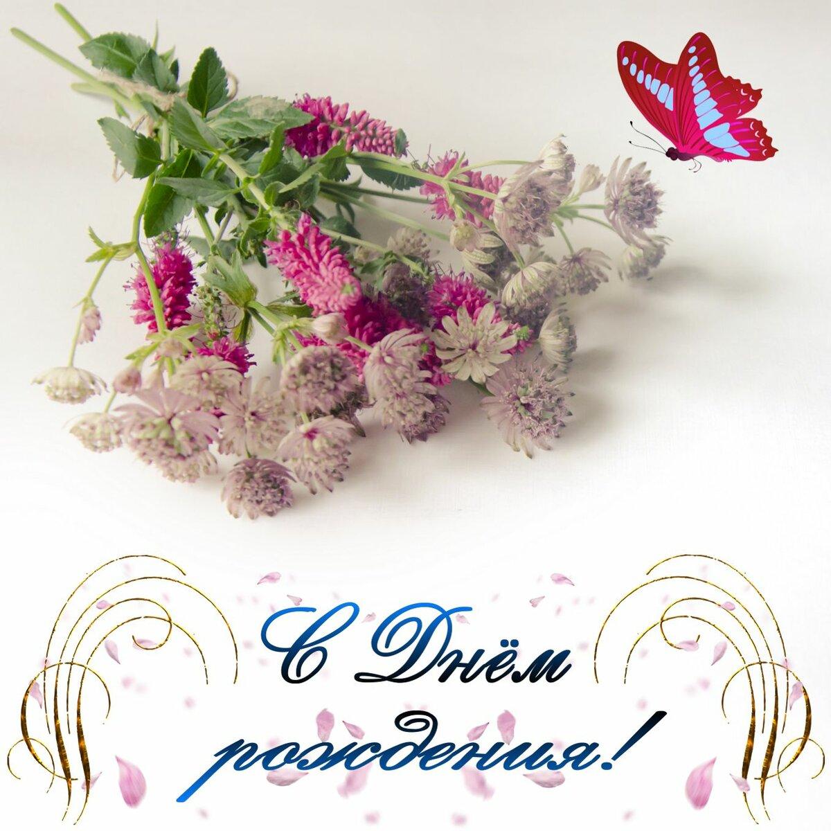 Полевые цветы открытки с днем рождения
