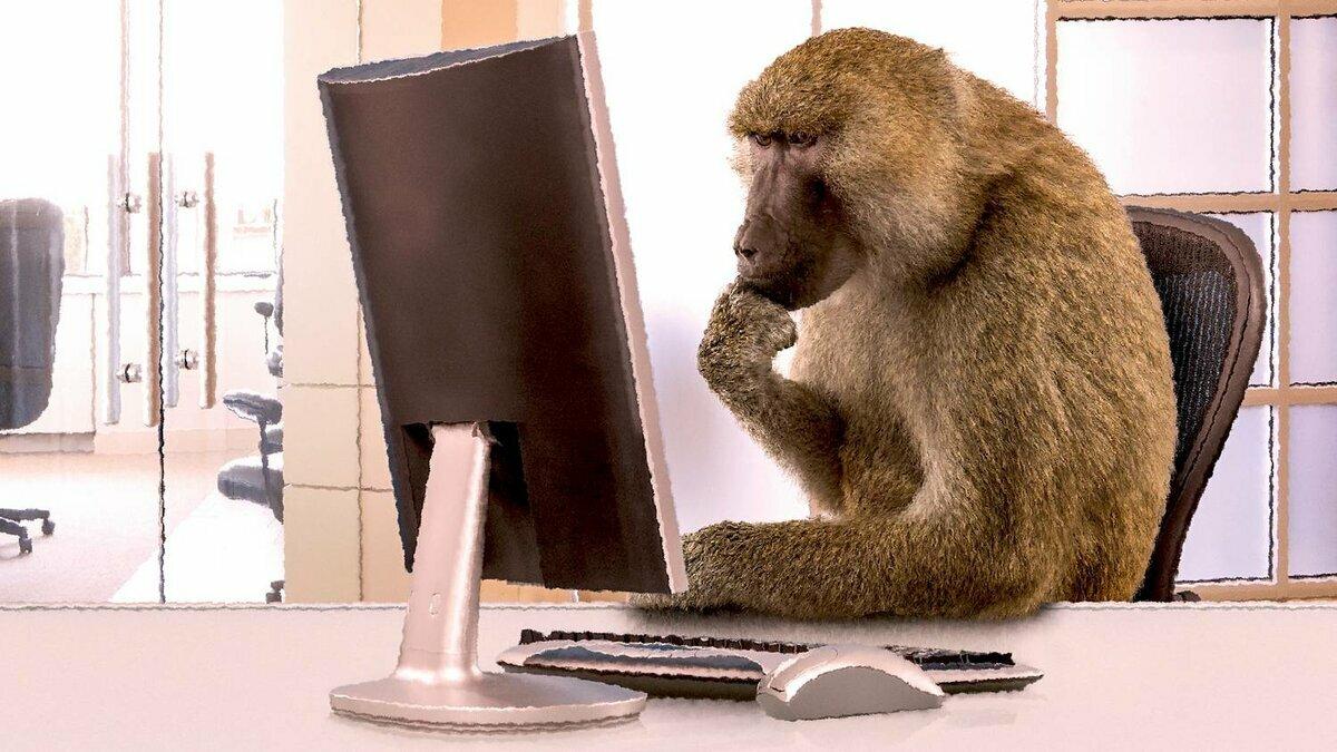 предупредить прикольная картинка обезьяна в офисе почему именно это