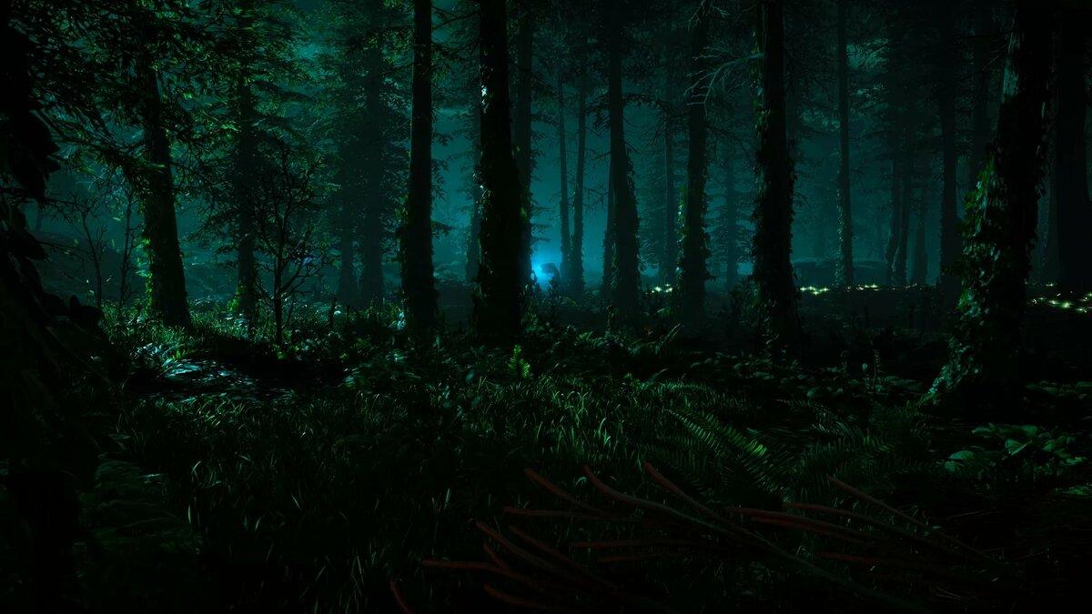 вывеска композита ночной лес картинки на рабочий всего, это