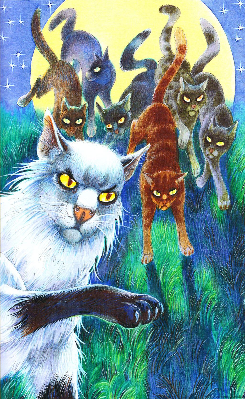 Коты воители герои книг с картинками
