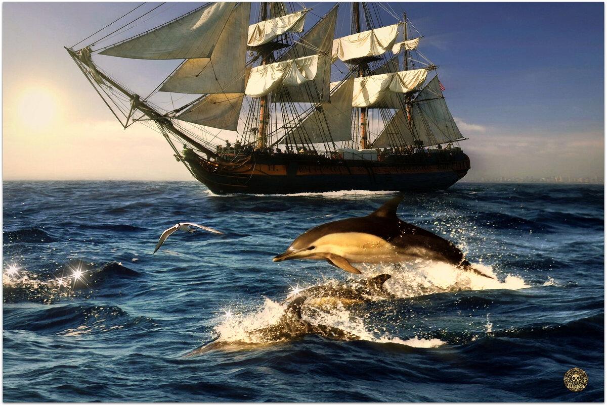 Картинка корабля и моря
