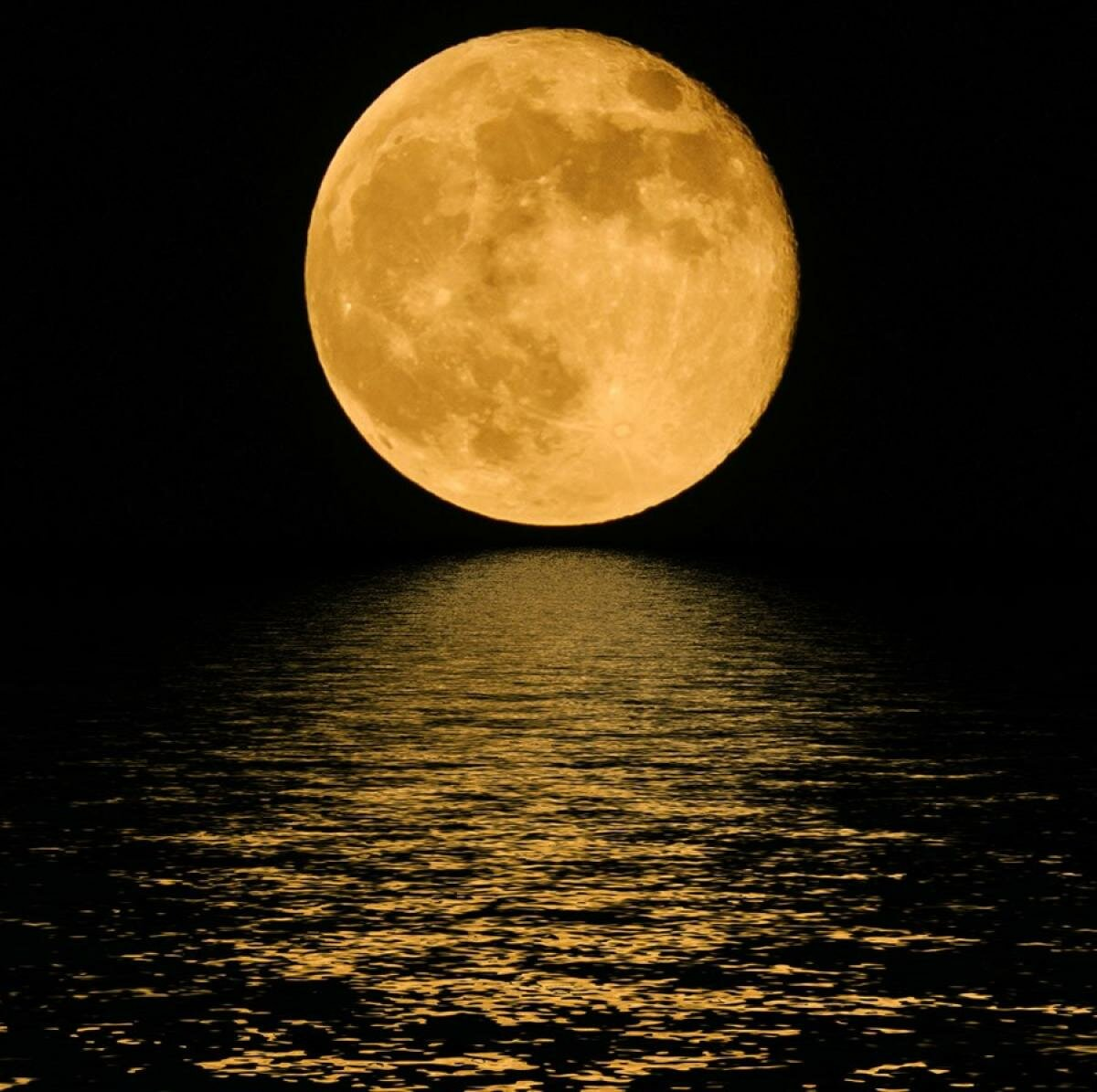 сайт картинок луны всех